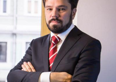 Бирюлин Святослав Борисович